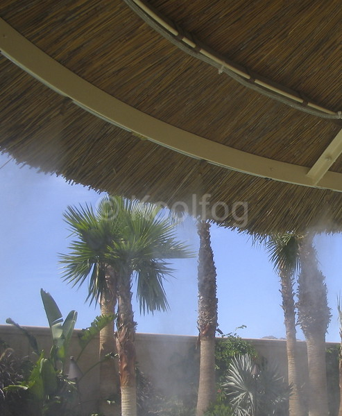 Misting Palapa Underneath Vertical