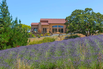 3518 Bloomfield, Sebastapol exterior view of house and in-law unit showing gardens and lavender fields