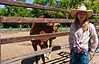 Stables manager, Matylda Smith, Bishop's Lodge Ranch Resort & Spa, Santa Fe, New Mexico, USA