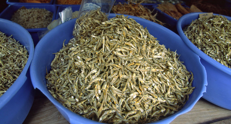 Sun dried, salted fish, a local favorite, for sale in Pangkor, Palau Pangkor, Malaysia, Asia.