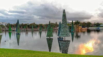 Christmas Trees at SeaWorld