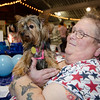Livie, from the therapy pet group TheraPaws, hangs out with Debi Griffin during the community resource fair at the Fitchburg Senior Center on Thursday evening. SENTINEL & ENTERPRISE / Ashley Green