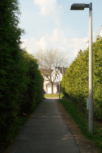 Fallingbrook