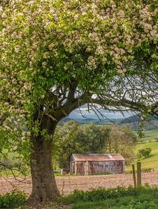 Clun Valley, Shropshire