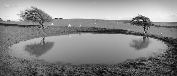 Dew pond near Ditchling Beacon, South Downs
