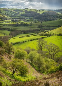 Teme Valley from Offa's Dyke