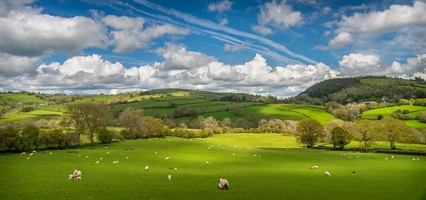 Clun Forest, Shropshire