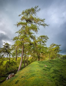 Offa's Dyke, Shropshire