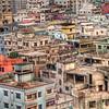 Urban Jungle, Dhaka, Bangladesh