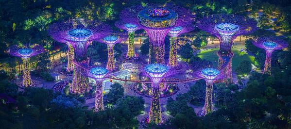 Singapore Aug 2018