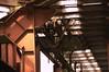 zeche Zollverein036