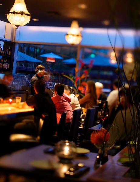 Restaurant/Lifestyle
