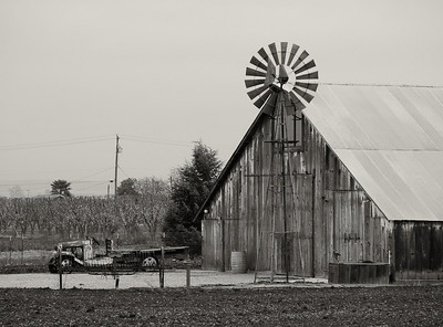 Hollister Barn