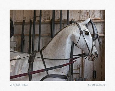 Vertigo Horse