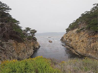 Point Lobos (9-18mm lens)