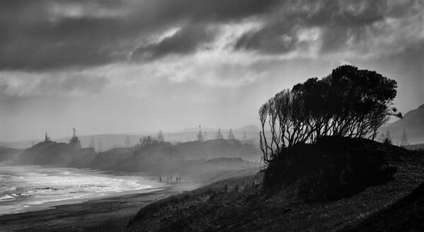 Muriwai Beach NZ - Jocelyn Manning