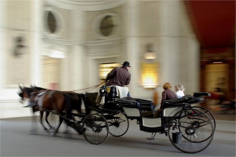 Exploring Old Vienna - Steve Brown