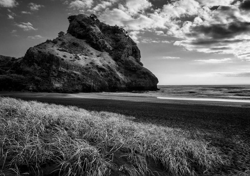 Piha Beach - Jocelyn Manning