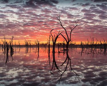 Sunrise at the Lake - Ann Jones