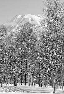 Mount Yokei - Vicki White
