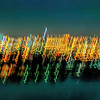 Bright City Lights - Susan Moss