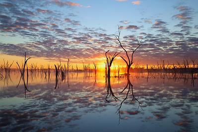 Yenyelling Lakes - Vicki White