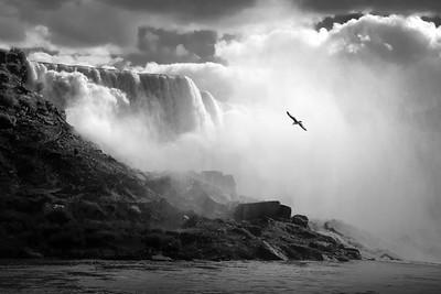 Niagara Mist - Steve Brown