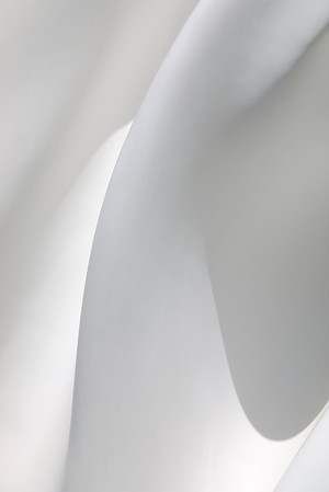Curves in White - Steve Crossley