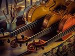 Strings in the Window - Richard Goodwin