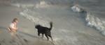 Doggone Shore - Richard Goodwin
