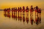 Sunset in Broome - Trish Gibbs