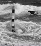 Surfing at Cottoesloe - Fred Armstrong