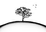 Tree on a Hill - Susi Nodding