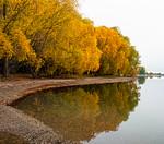 Autumnal - Marise Fitzmaurice