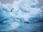Antarctic Standoff - Todd Edwards