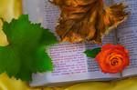 Life Death Life Eternal - Sybille Bonow
