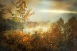 Heavenly Fall - Richard Goodwin