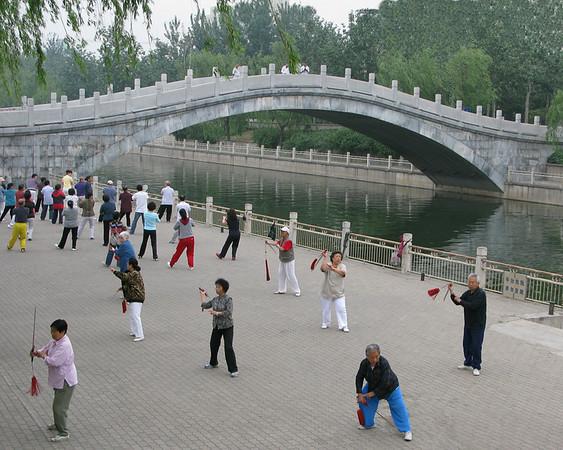 Tai Chi Bridge - Ann Jones<br /> Set - Third Place members' choice