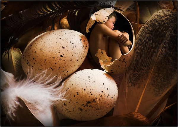 The Hatchling - Kim McAvoy<br /> Second place Judge's choice and second place Members' choice