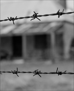 Barbed Wire - Richard Goodwin Set - Fourth place members' choice