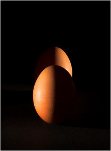 Egg Eclipse - Kim McAvoy First place members' choice