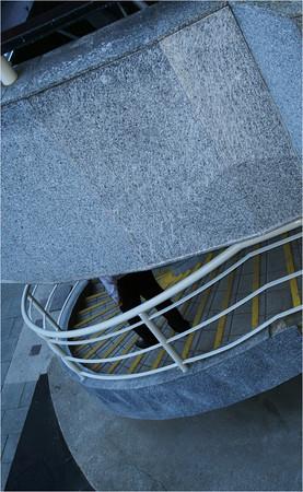 Concrete Trap - Richard Goodwin