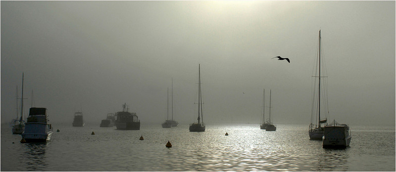 Boats in the Fog - Phil Burrows<br /> Mono Print of the Year