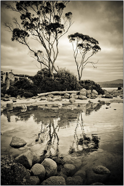 Rock Pool - Ray Ross<br /> Monochrome Print of the Year