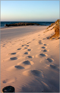 Footsteps - John King Third place members' choice.