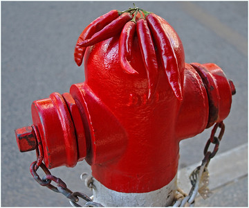 Hot Hydrant - Richard Goodwin Third place judge's choice.