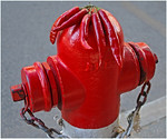 Hot Hydrant - Richard Goodwin<br /> Third place judge's choice.
