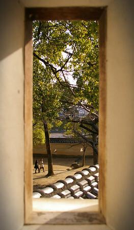 Hameji Window - Steven Crossley<br /> Fifth place members' choice - Set.