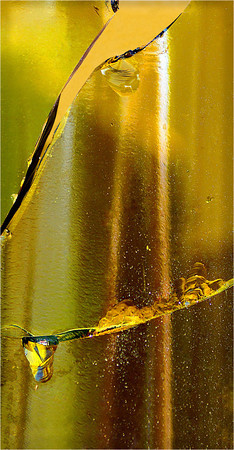 Broken Bottle - Phil Burrows<br /> Fifth place Members' choice.Third Place Judges choice.<br /> Set