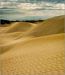 Sand Dune - Ray Ross<br /> Judges Choice - First place<br /> Members Choice - First place<br /> Open